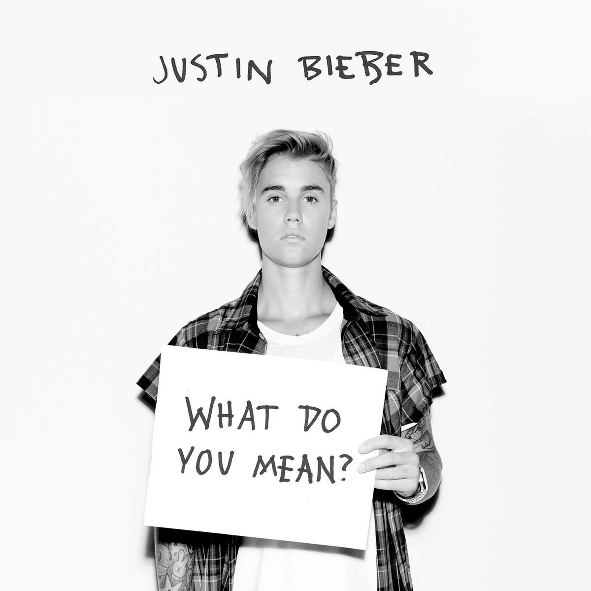دانلود آهنگ What Do You Mean از Justin Beiber